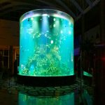 Kina običaj jeftini super veliki okrugli pmma staklenih akvarija jasno cilindri akrilni tankovi riba