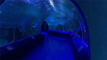 180 ili 90 stupnjeva akrilnih ploča za tunel akvarija