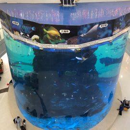 od 20mm do 500mm debelih akrilnih ploča za moderne velike ribe
