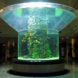 pmma stakleno akvarij polusvjetlo perspex jasno riblja cisterna