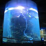 čisti akrilni cilindar velikog akvarija za akvarije ili oceanski park