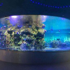tvornica za opskrbu ribljih posuda, akvariji okruglih staklenih spremnika