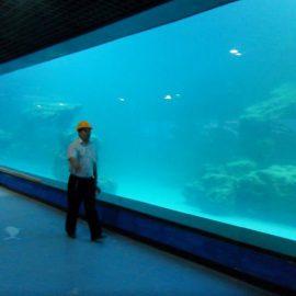 UV akrilna ploča od lijevanog zida za akvarija / oceanarium