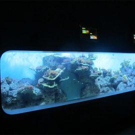 Umjetna cast akrilna Cilindrična prozirna riba akvarij / prozorski prozor