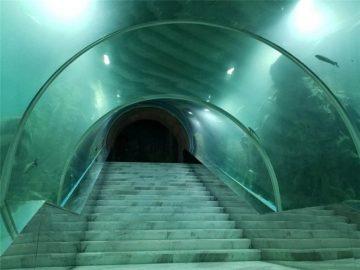 Cijena akvarije tunela akvarija
