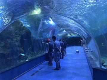 Akvarijski akrilni tunel od pleksiglasa