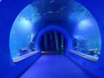 Visoko čist akvarijski akvarij različitih oblika