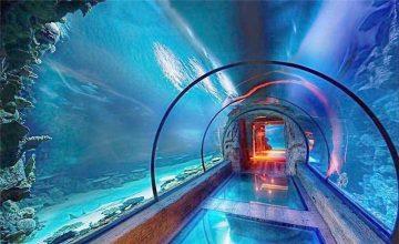 Moderni dizajn akrilni akvarijski dugi tunel