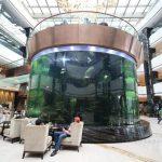 velike plastične ribe akvarijskih spremnika životinja
