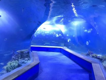 prozirno akrilno staklo Akvarij tunela