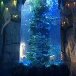 prozirne akrilne ploče za veliki akvarij, riblje posude